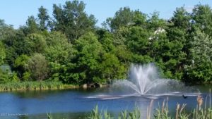 Adelphia Greens condos for sale